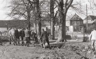 Work is undertaken on the park grounds of the old cemetery (Alter Friedhof) in the 1950's